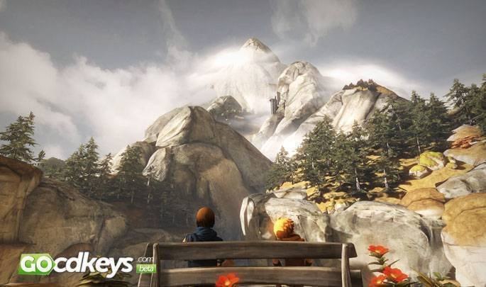 Article title about Brothers A Tale of Two Sons