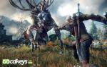 the-witcher-3-wild-hunt-pc-games-1.jpg