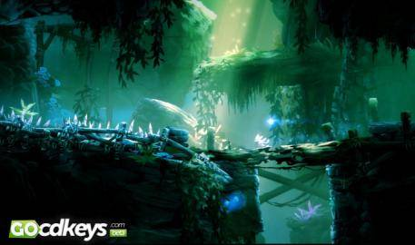 Regarder la bande-annonce de Ori and the Blind Forest