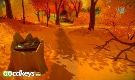 Watch The Witness  trailer