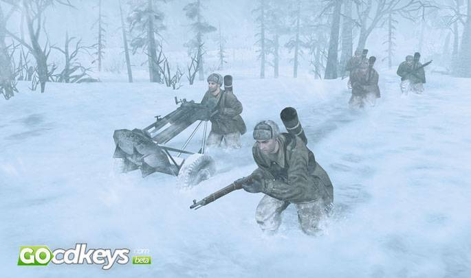 Article title about Company of Heroes 2