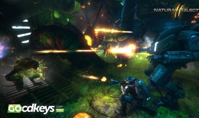 Natural Selection  Free Steam Key