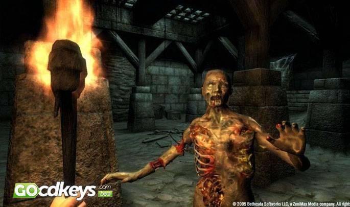 Edition Of The Elder Scrolls Iv Oblivion