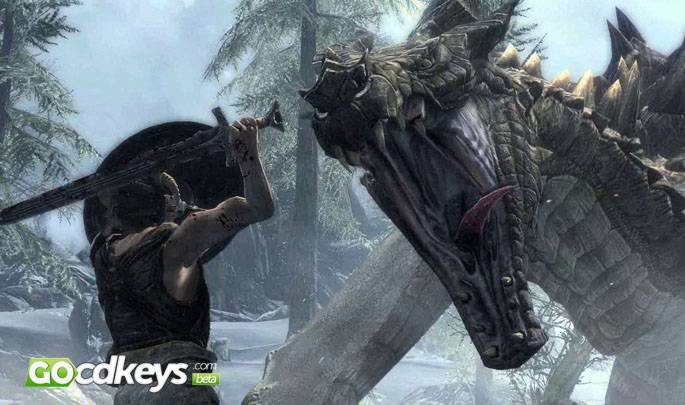 Article title about The Elder Scrolls V: Skyrim