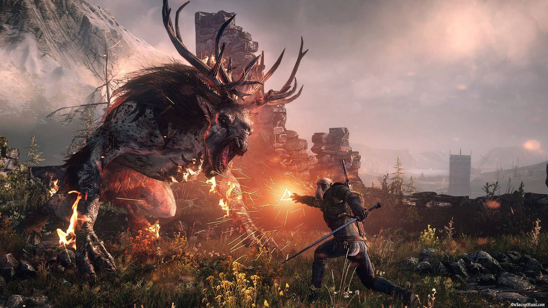 Article title about The Witcher 3 Wild Hunt