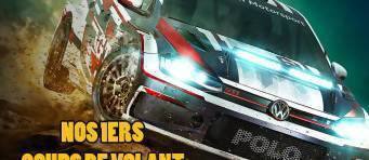 Article sur DiRT Rally
